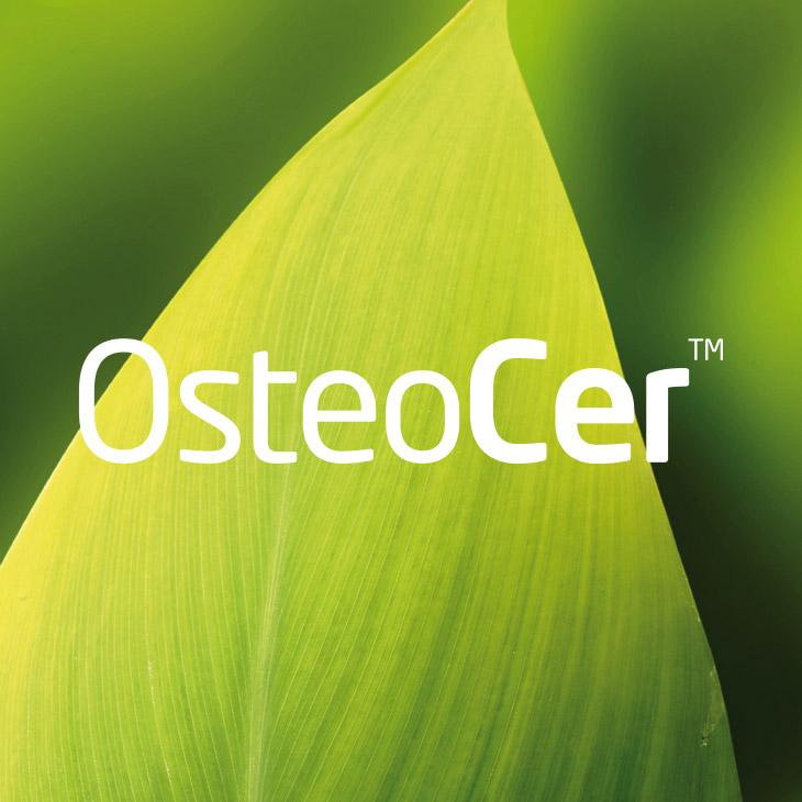 OsteoCer | BioCer