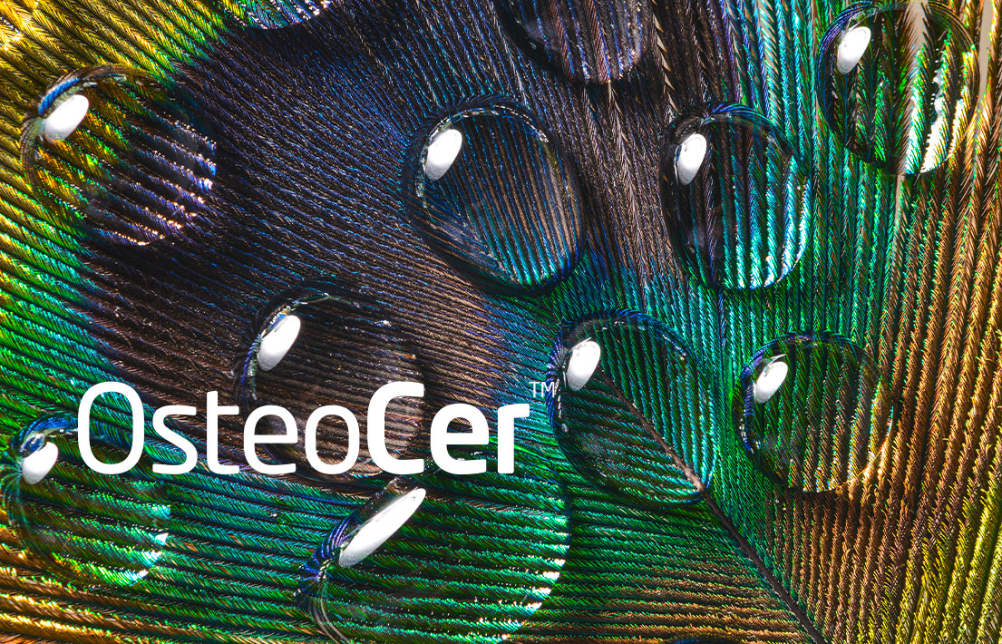 teaser Biocer Osteocer
